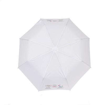 Mini-Regenschirm